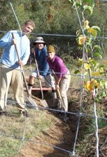 Students digging a swale in a Permaculture Design Course