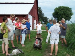 Spence Farm Permaculture Tour