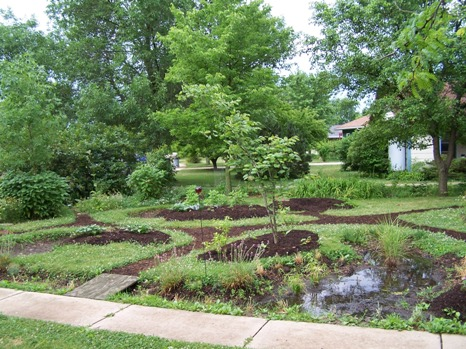 Front Yard Rain Garden and Berm