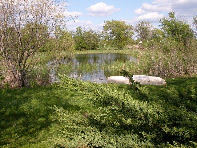 DSCN2676 640x480 Chinampas Gardens