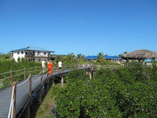 Eleuthera Island School - Bahamas (5)